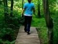 trails6.jpg